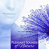 Pleasant Sounds of Nature – Spa Dreams, Deep Sleep, Stress Relief, Spa Music, Relaxation Wellness, Sensual Massage, Birds Songs by Deep Sleep Relaxation