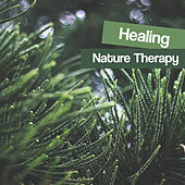 Healing Nature Therapy – Soothing Waves of Calmness, Stress Relief, New Age Music, Inner Silence by Echoes of Nature