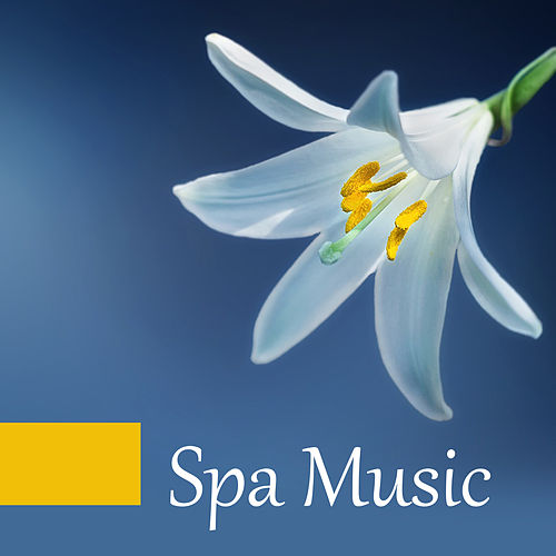 Spa Music – Pure Massage, Relaxation & Wellness, Pure Sleep, Soft Music to Calm Down, Relaxing Waves, Calm Mind, Silence by Relaxation - Ambient