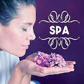 Spa – Relaxing Therapy for Wellness, Relief, Deep Massage, Nature Sounds for Relaxation, Stress Free, Calm Down, Spa Dreams de Zen Meditation and Natural White Noise and New Age Deep Massage