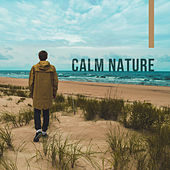 Calm Nature – Relaxing Music, Stresss Relief, Reduce Anxiety, Rest After Work de Sounds Of Nature