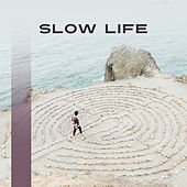 Slow Life – Relaxing Music for Yoga, Meditation, Healing Natural Sounds, Deep Relaxation, Therapy Music, Echoes of Nature de Ambient Music Therapy