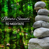 Nature Sounds to Meditate – Soothing Waves of Calmness, Time to Meditate, Soul Harmony, Spirit Journey by Meditation Awareness