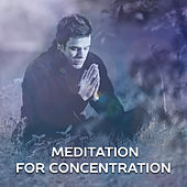 Meditation for Concentration – Yoga Sounds, Deep Focus, Calmness, Music to Calm Down, Inner Harmony, Meditation Music de Zen Meditation and Natural White Noise and New Age Deep Massage