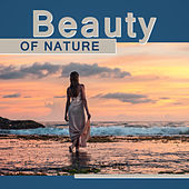 Beauty of Nature – Calming Nature Sounds , Pure Relaxation, Massage Music, Spa, New Age Collection de Zen Meditation and Natural White Noise and New Age Deep Massage