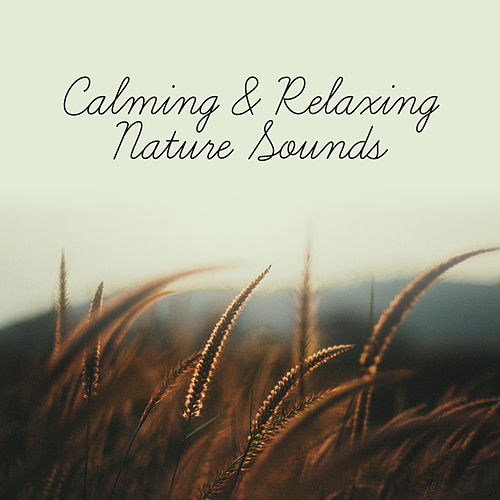 Calming & Relaxing Nature Sounds – Soft Music to Relax, Calm Down with New Age, Rest Yourself by Nature Sound Series