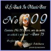 Cantata No. 73, ''Herr, wie du willt, so schick's mit mir'', BWV 73 by Shinji Ishihara