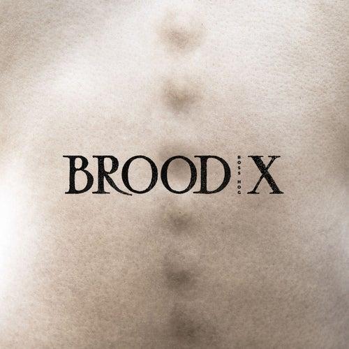 Brood X by Boss Hog