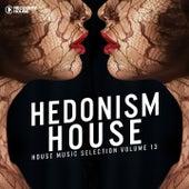 Hedonism House, Vol. 13 di Various Artists