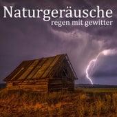 Naturgeräusche: Regen mit Gewitter von Entspannungsmusik