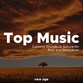 Top Music - Relaxing Music, Calming Sounds of Nature for Rest and Relaxation by Various Artists