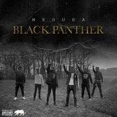 Black Panther by Medusa