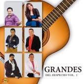 Grandes del Despecho, Vol. 1 de Various Artists
