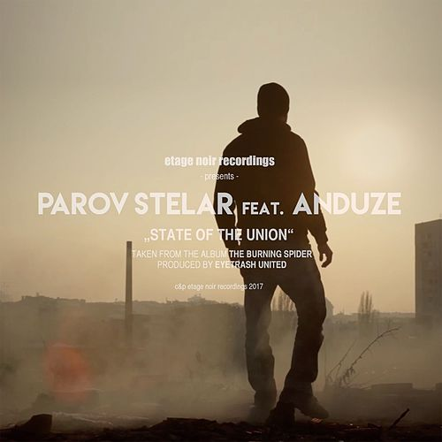State Of The Union (feat. Anduze) von Parov Stelar