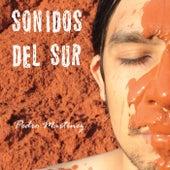Sonidos del Sur by Pedro Martinez