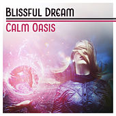 Blissful Dream Calm Oasis (Soothing Music for Everyone, Baby Sleep, Deep Rest, Ambient Serenity, Inner Silence) by Various Artists