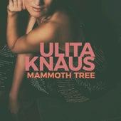 Mammoth Tree by Ulita Knaus