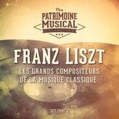 Les grands compositeurs de la musique classique : Franz Liszt, Vol. 2 by Various Artists