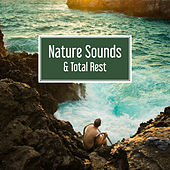 Nature Sounds & Total Rest – Melodies of Sea, Relaxation, Ibiza Lounge, Holiday Chill Out Music, Beach Chill von Ibiza Chill Out