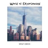 World of Experiences by Wesley Ignacio