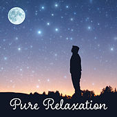 Pure Relaxation – Classical Chillout, Anti Stress Music, Composers to Rest, Mozart, Bach, Beethoven de Moonlight Sonata