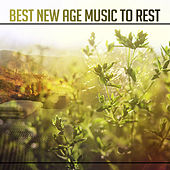 Best New Age Music to Rest – Pure Mind, Peaceful Music to Calm Down, Stress Relief, Flute Music, Nature Sounds for Relaxation by Meditation Awareness
