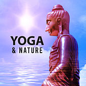 Yoga & Nature – Healing Music, New Age Sounds for Meditation, Yoga Training, Zen, Reiki, Stress Relief, Nature Sounds de Zen Meditation and Natural White Noise and New Age Deep Massage