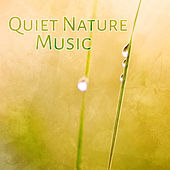 Quiet Nature Music – Peaceful Sounds of Nature, Deeper Relax, Spa, Massage de Nature Sounds Artists
