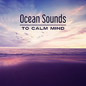 Ocean Sounds to Calm Mind – Stress Relief, Inner Relaxation, Peaceful Waves, Water Sounds, Music to Rest de Sounds Of Nature
