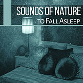 Sounds of Nature to Fall Asleep – Sleep Music, Lullabies for Deep Sleep, Easy Sleep, Relaxing Music, Pure New Age Relaxation de Sounds Of Nature
