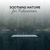 Soothing Nature for Relaxation – Most Beautiful Nature Sounds, Singing Birds, Wind Waves, Soft Music de Nature Sounds Artists