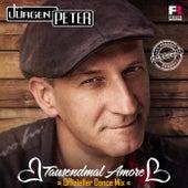 Tausendmal Amore (Offizieller Dance Mix) by Jürgen Peter