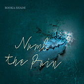 Numb the Pain von Booka Shade