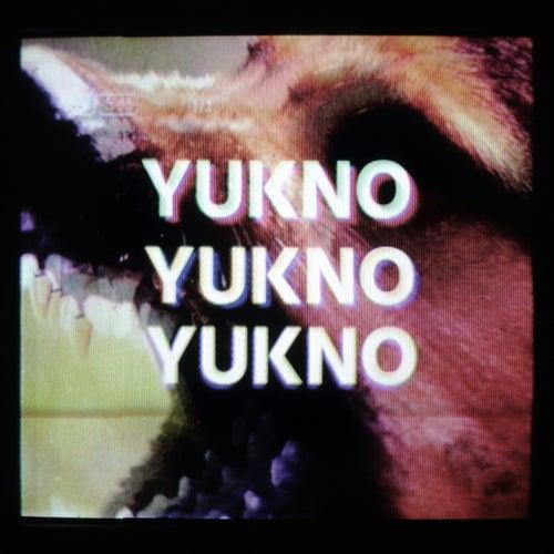 Hund by Yukno