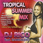 Tropical Summer Mix by DJ Rico