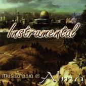 Música para el Alma, Vol. 8 (Instrumental) de God Concept