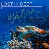 Lost in Deep de Various Artists