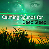 Calming Sounds for Deep Sleep – Stress Relief, Deep Sleep, Soothing Sounds, New Age Relaxation, Peaceful Night by Deep Sleep Relaxation