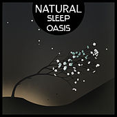 Natural Sleep Oasis – Deep Sleep with Relaxing Tracks of Nature, Sleep Meditation, Solve Your Sleep Problem, Pure Spa by Various Artists