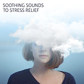 Soothing Sounds to Stress Relief – Calming New Age Sounds, Rest & Relax, Easy Listening, Relaxation Music de Healing Sounds for Deep Sleep and Relaxation