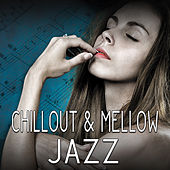 Chillout & Mellow Jazz – Instrumental Jazz Music, Calming Piano, Smooth Jazz, Relaxed Mind, Music at Night de Acoustic Hits