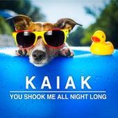 You Shook Me All Night Long (Acoustic) de Kaiak
