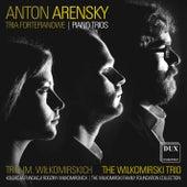 Arensky: Piano Trios by Wilkomirski Trio