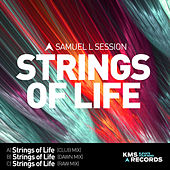 Strings Of Life 2015 by Samuel L Session