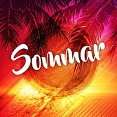 Sommar by Various Artists