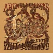 Animals In The Dark by William Elliot Whitmore