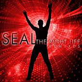The Right Life - The Remixes de Seal