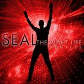 The Right Life - The Remixes van Seal