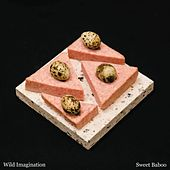 Wild Imagination by Sweet Baboo