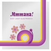 Mmmana! (Easy Jazz Electronica) van Various Artists